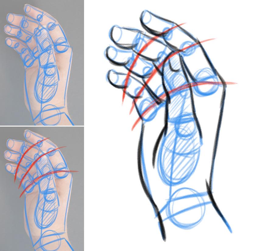 Zeichnen lernen - Hände zeichnen - variationsphase