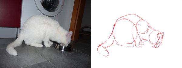 Katzen zeichnen - Grundformen Katze nach vorn gebeugt
